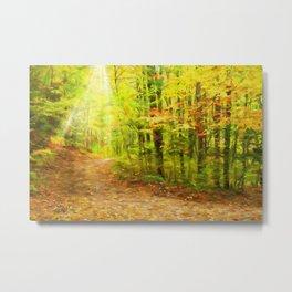Autumns Light Metal Print