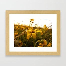 There exists little in this world finer than flowers in the spring Framed Art Print