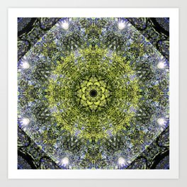 Light Shining Through a Tree Fractal Art Print