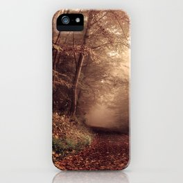 Forest path 2 iPhone Case