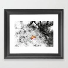 Asteroidea Framed Art Print