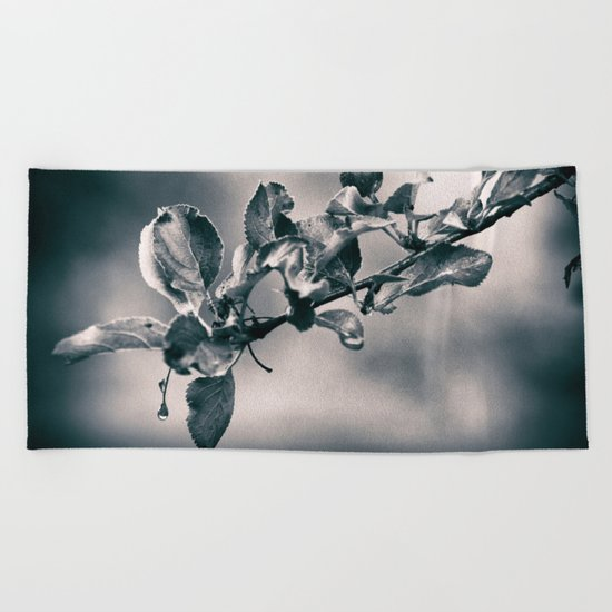 After the Rain Beach Towel