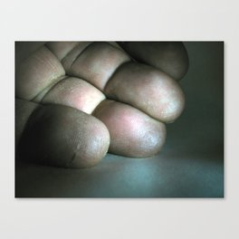 fingers Canvas Print