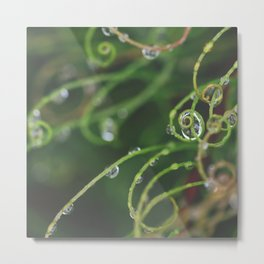 Raindrops on Curly Wig #2 Metal Print