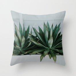 San Diego Succulents Throw Pillow