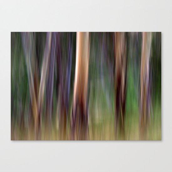 Colours of Australia Canvas Print