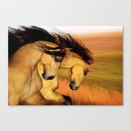 HORSES - The Buckskins Canvas Print