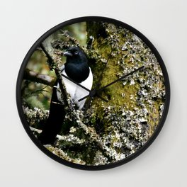 Eurasian Magpie Wall Clock