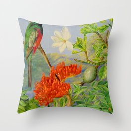 Two Flowering Shrubs of Natal and a Trogon - Marianne North 1882 Throw Pillow