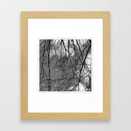 Wintry Branches Framed Art Print