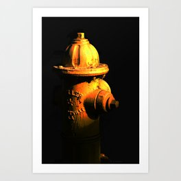 Fire Hydrant Orange and Black Art - Hot - Sharon Cummings Art Print