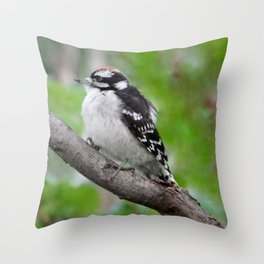 Downy Woodpecker (juvenile male) Throw Pillow