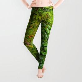 Tropical Nature Print Leggings