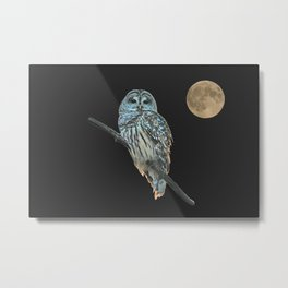 Owl, See the Moon (Barred Owl) Metal Print