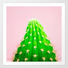 Cactus Photography Modern Minimalist blush pink cactus II Art Print