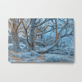 Sapphire Forest Metal Print