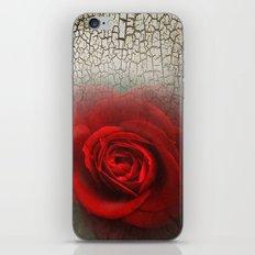 Desertrose iPhone & iPod Skin
