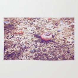 Escargot Rug