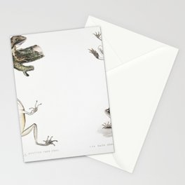 Chinese Parra (Parra Sinensis) 1 Adult 2 Young 3 Chicken just hatched from Illustrations of Indian z Stationery Cards