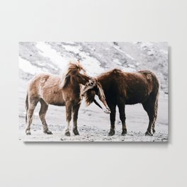 Wild Horses III / Iceland Metal Print
