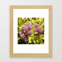 Lilac flowers Framed Art Print