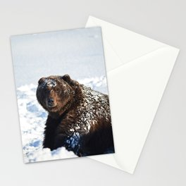 Alaskan Grizzly in Snow Stationery Cards