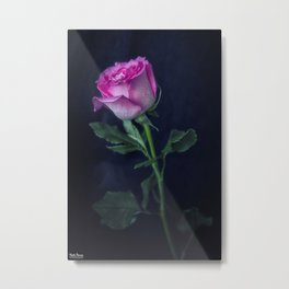 Rosa. Metal Print