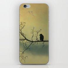 Solitude Mood iPhone & iPod Skin