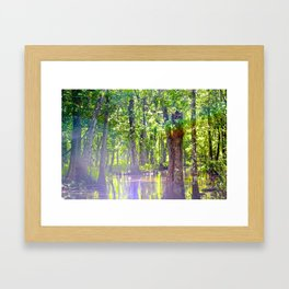 Beauty in the Swamp Framed Art Print