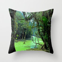 Jungle - Guatemala Throw Pillow