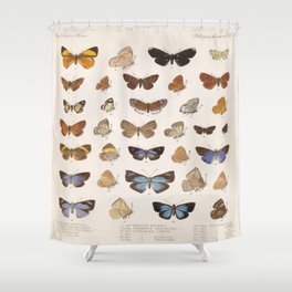 Vintage Scientific Insect Butterfly Moth Biological Hand Drawn Species Art Illustration Shower Curtain