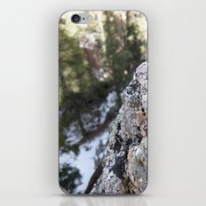 Crystalline Moss iPhone & iPod Skin
