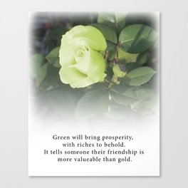 Green Rose  - Tea with Roses Canvas Print