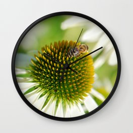 Rudbeckia white 065 Wall Clock