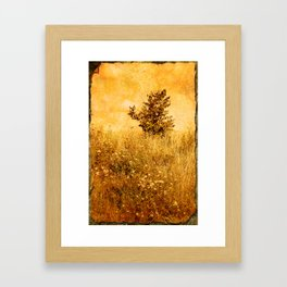 Old Picture of Landscape Framed Art Print