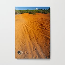 Small desert Metal Print