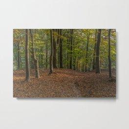 Autumn Evening Metal Print