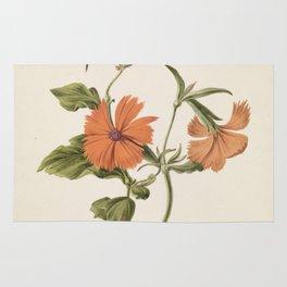 M. de Gijselaar - Yellow Chinese rose (1820) Rug