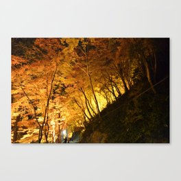 All Are In Awe Canvas Print