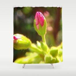 Pink Geranium Flower Bud Shower Curtain