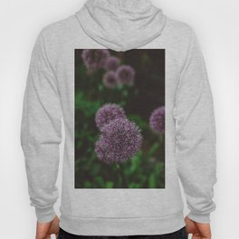 New York Alliums Hoody