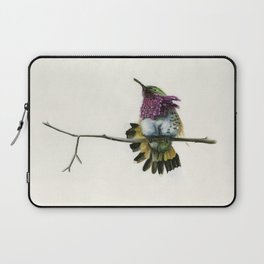 Hummingbird on a branch Laptop Sleeve