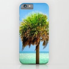 Stately Palm iPhone 6s Slim Case
