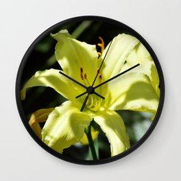 Purrty White Flower Wall Clock