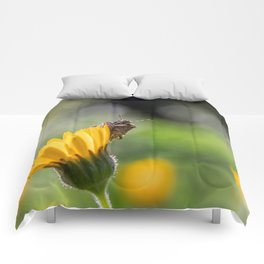 Funny insect on yellow flower Comforters