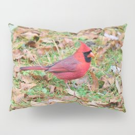 Autumn Leaves Cardinal Pillow Sham