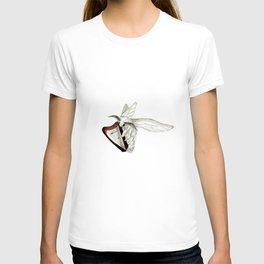 Moth Tries Harp T-shirt