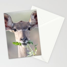 Kudu portrait Stationery Cards