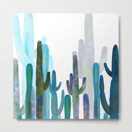 Cactus blue Metal Print