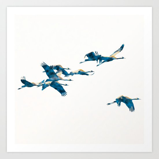 Beautiful Cranes in white background Art Print